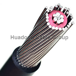 16mm2/25mm2/35mm2 Copper/AAAC Conductor Concentric Cable
