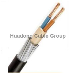 10mm armoured cable